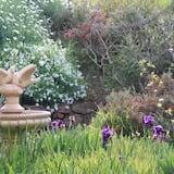 Panoramic bangalo, 4 magamistoaga, vaade viinamarjaistandusele, asukoht aias / aiapoolne - Vaade aiale