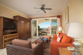 Nuevo Vallarta — zdjęcie hotelu Family Residences by Villa del Palmar Flamingos