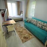 舒適公寓, 1 間臥室, 廚房, 城市景 - 客廳