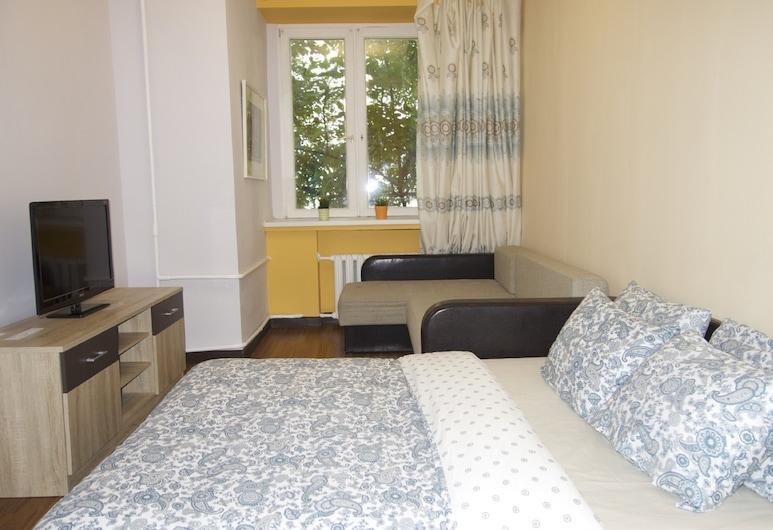 LUXKV Apartment on 1st Basmanniy, Moskwa, Pokój