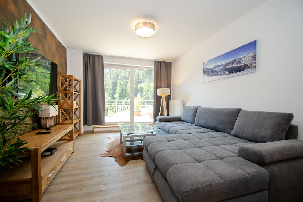 Apartment, 2 Bedrooms, Mountain View - Living Area