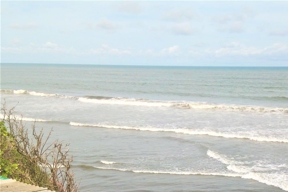 ビーチ / オーシャン ビュー