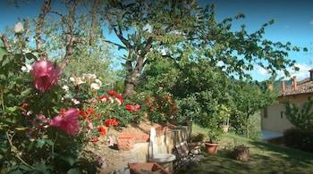 Bild vom A Casa di Olivo in Florenz
