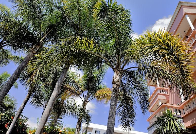 L'Hostel, Casablanca, Taman