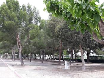 Gambar Camping La Paz di Murcia