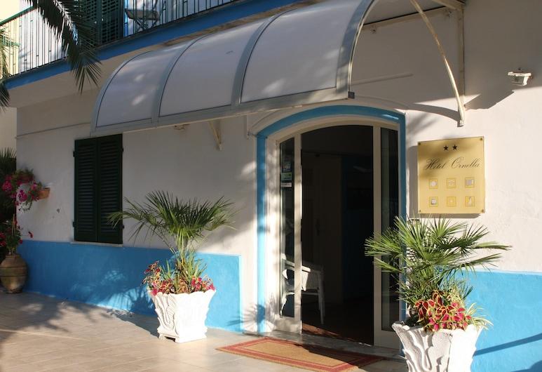 Hotel Ornella, Camaiore, Pintu Masuk Hotel