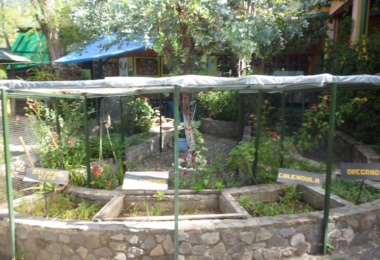 بوسادا لوس إنكوينديروس, باناخاتشيل, المنطقة المحيطة بالمنشأة