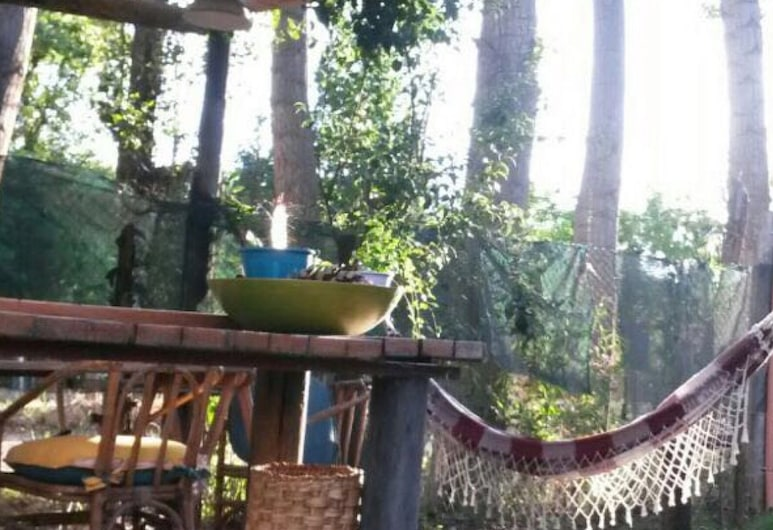 Enjoy Mendoza Leisure Time in Chacras de Coria, Chacras de Coria, Balcony