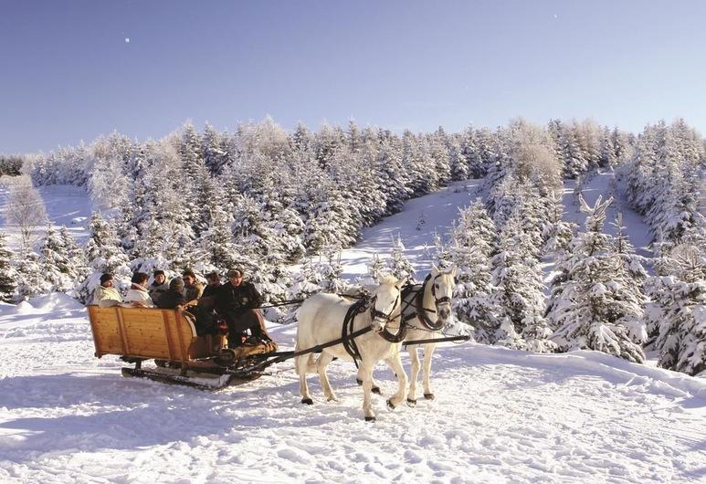 Buntes Haus Seiffen - Hotel Erbgericht, Seiffen, Snježni i skijaški sportovi