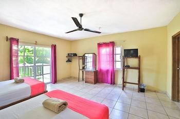 Image de Les trois singes - Party and Friendly Hostel à Isla Mujeres