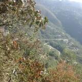 Uitzicht op bergen