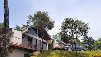 Picture of Green Forest Vacations Homes in Monteverde
