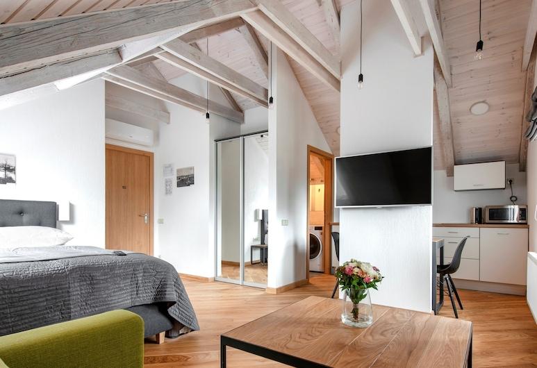 Piano Apartments, Каунас, Президентська студія-люкс, 1 ліжко «квін-сайз» та розкладний диван, з видом на річку, Номер