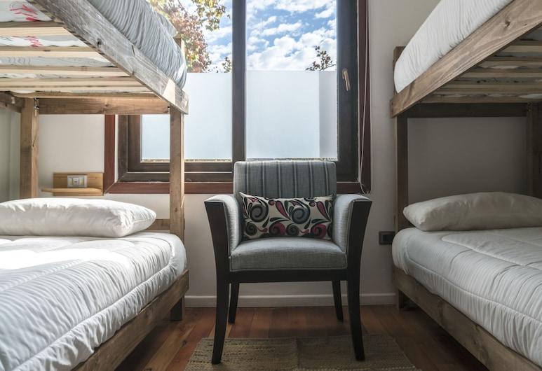 Casa Viva Hostel, Santiago, Premium dubbelrum - sovsal (män och kvinnor) - privat badrum, Gästrum