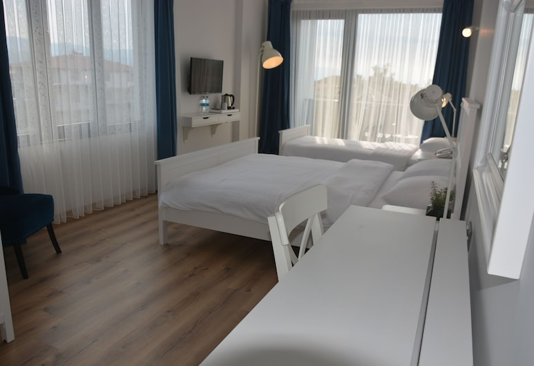 Eleia Hotel İznik, Iznikas, Svečių kambarys