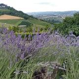 Tweepersoonskamer - Uitzicht op de vallei