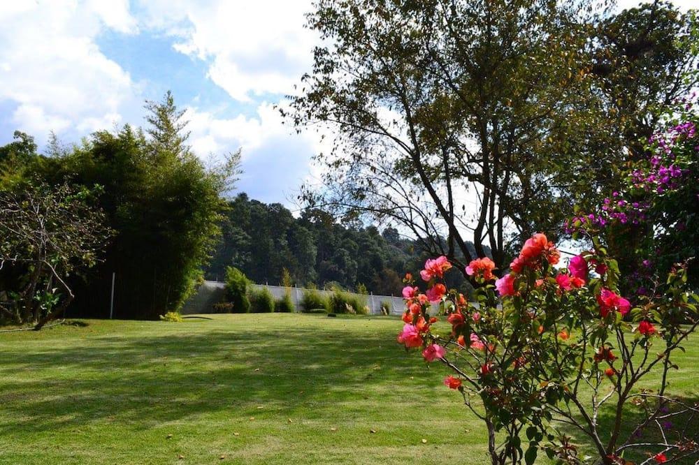 Basic Single Room - Garden View