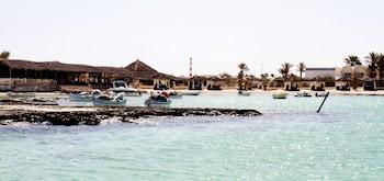 Picture of Dar Jerba Narjess in Djerba Midun