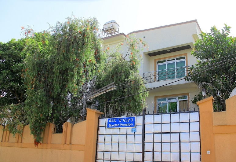 Tseder Pension, Addis Ababa, Pintu Masuk Hotel