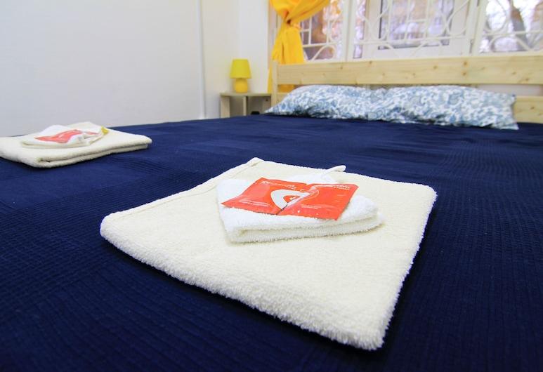 Hostel Izmailovsky Park, Moscow, Basic Double Room, 1 Queen Bed, Guest Room