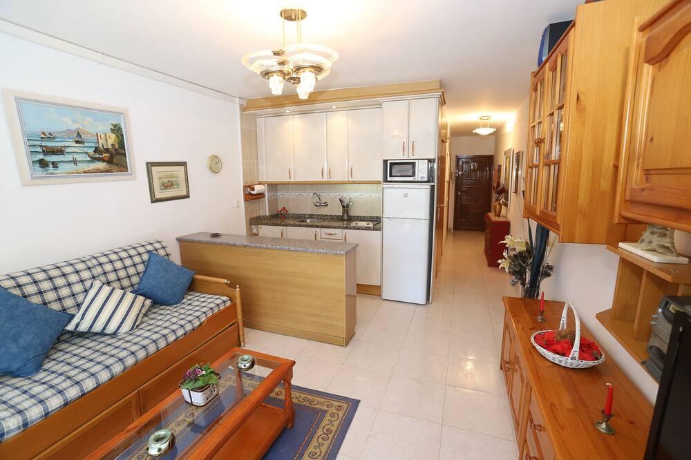 Dzīvokļnumurs, viena guļamistaba, terase - Dzīvojamā istaba