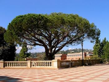 Nuotrauka: The Grand Inn, Mysore