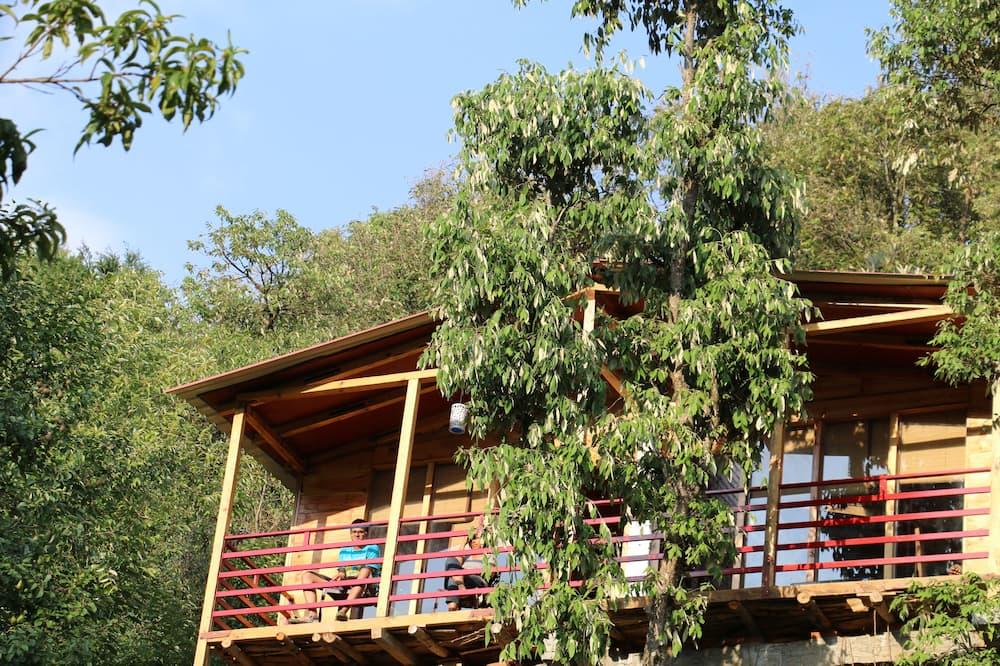 樹屋 - 客房