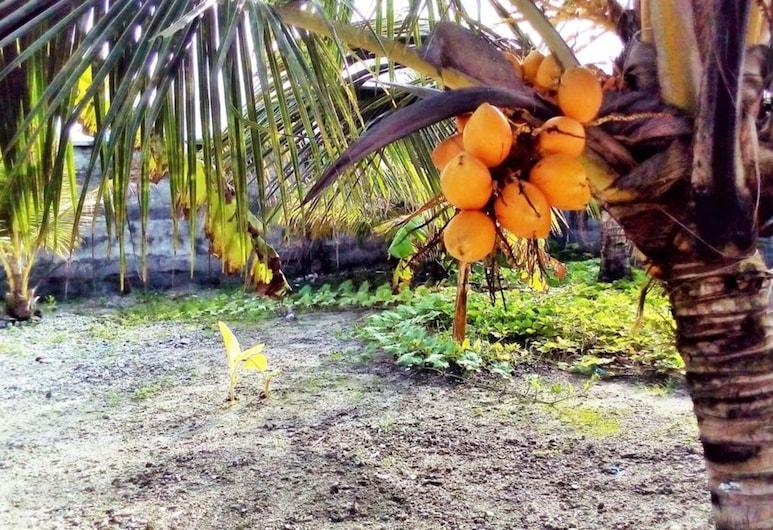 Zayan Holiday Home - Maldives, Hithadhoo, Hotel Front