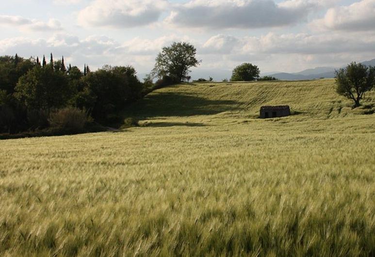Poggio Del Castagno, Pitigliano, Terrein van accommodatie