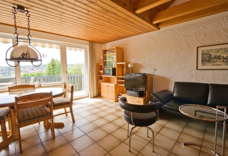 Maisonette-Ferienwohnung am Kurpark, Braunlage, Apartment, 2 Bedrooms, Non Smoking, Slope side, Living Room