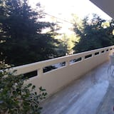 Apartamentai, 3 miegamieji - Balkonas