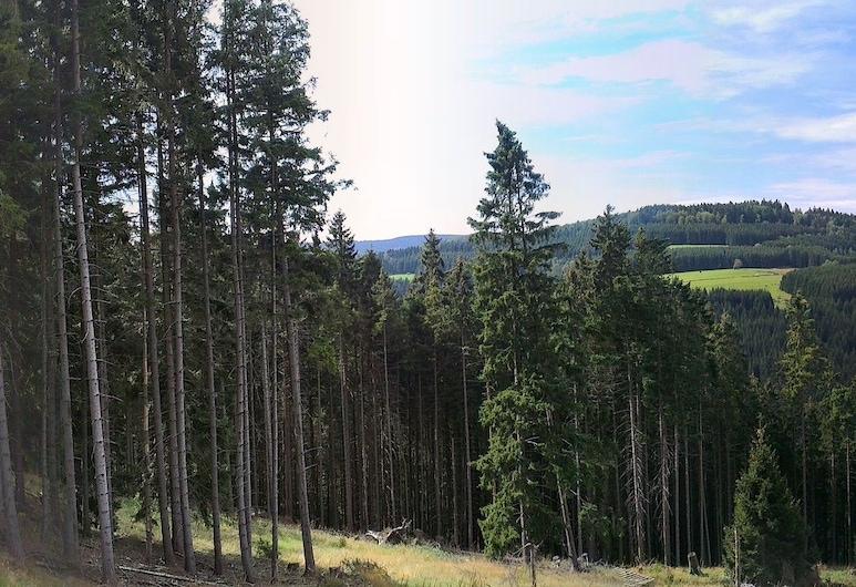 Sonneneck, Winterberg, Hotelli territoorium