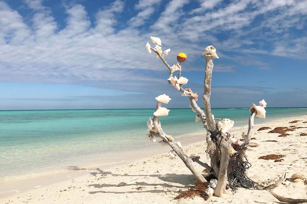 Condo, 1 Bedroom, Hot Tub (Flamingo Hideaway) - Beach