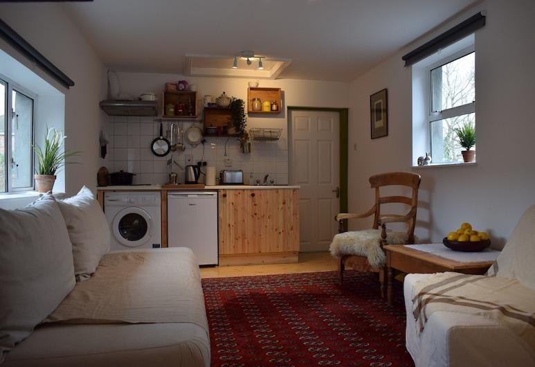 1 Bedroom Flat, Close to City Centre, Dublin, Apart Daire (1 Bedroom), Oturma Alanı
