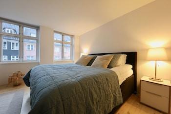 Kuva Two-Story LUX Apartment in Heart of Cph-hotellista kohteessa Kööpenhamina