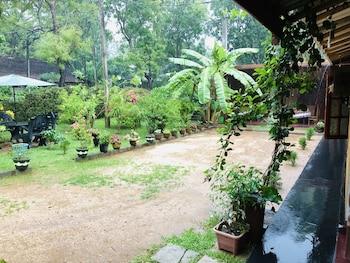 丹布拉錫吉里亞自然別墅旅館的相片