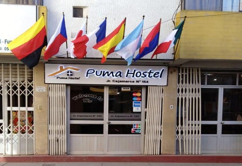 Puma Hostel Puno, Puno