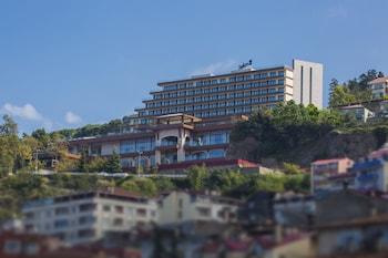 Trabzon bölgesindeki Radisson Blu Hotel Trabzon resmi
