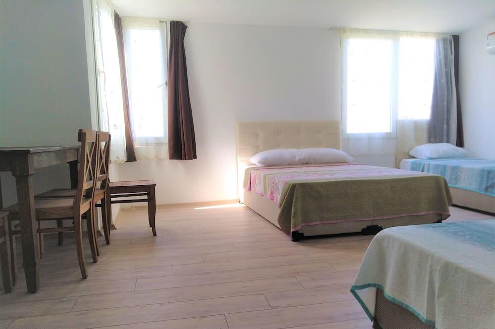 Classic Studio, 1 Bedroom, Kitchenette (4th floor, no elevator) - Living Area