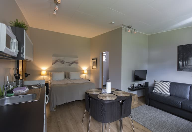 A. Bernhard Guesthouse, Reykjanesbær, Studio, 1 Queen Bed with Sofa bed, Private Bathroom, Guest Room
