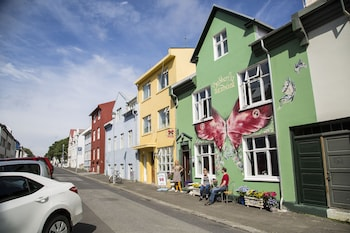 Picture of Butterfly Guesthouse in Reykjavik