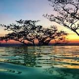 Вид на воду