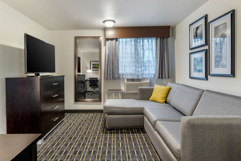 Basic Suite, 1 King Bed, Non Smoking - Guest Room