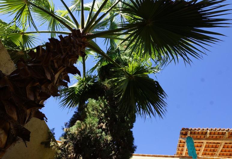 Colonial Style House, San Miguel de Allende, Garten