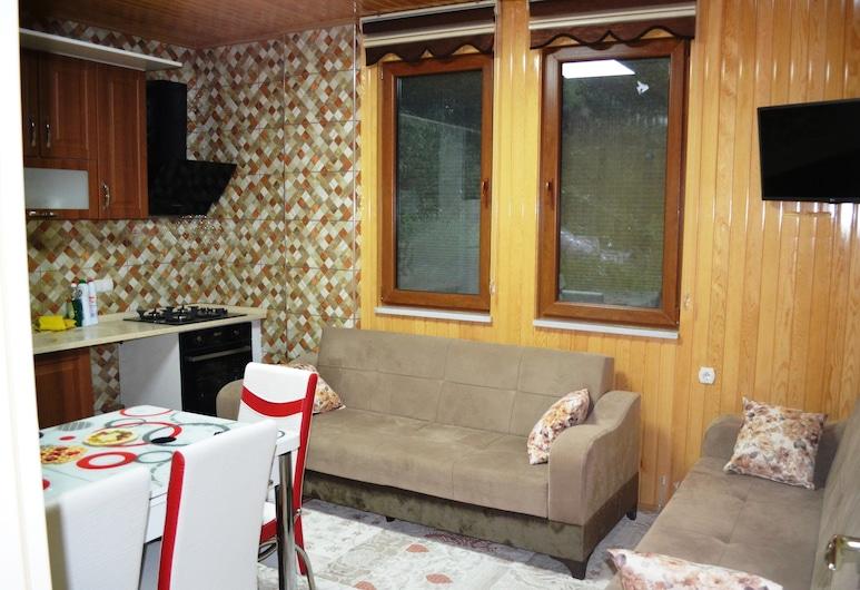 Gul Pansiyon, Çaykara, Apartment, Ruang Tamu