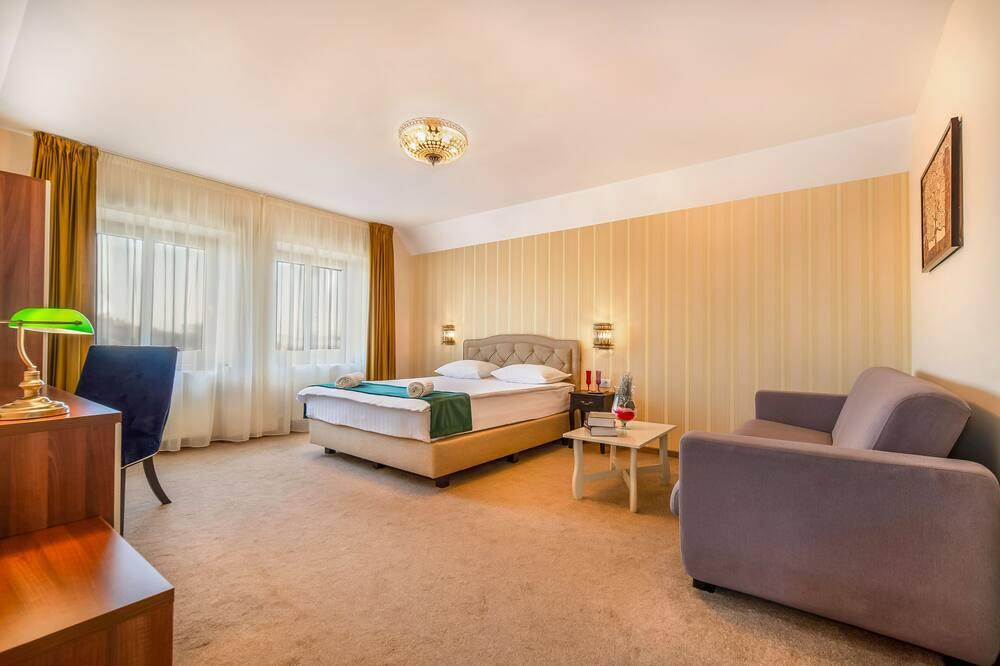 Leilighet, 1 dobbeltseng med sovesofa, ikke-røyk, balkong - Oppholdsområde