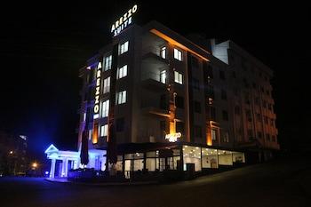 Trabzon bölgesindeki Arezzo Suit Hotel resmi