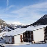 Лыжи и другие зимние виды спорта