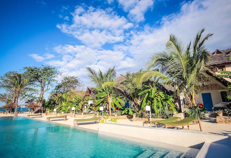 Fun Beach Hotel, Jambiani, Trädgård