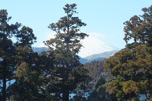 Hananoyado